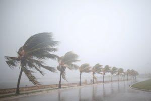 Cuộc di tản tránh bão lớn nhất trong lịch sử bang Florida